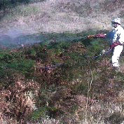 central_coast_weed_sprayer9